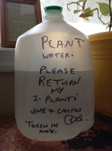 plant water