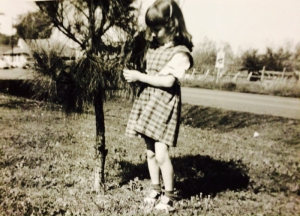 Alison Wonder Tree Caring