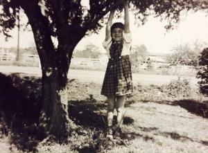 Alison Wonder Tree Hanging